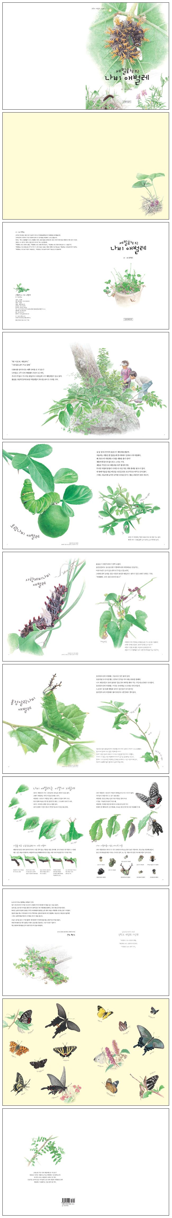 나비 애벌레(세밀화로 보는)(권혁도 세밀화 그림책 4) 도서 상세이미지