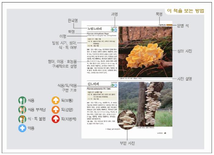 새로운 한국의 버섯(한국의 자연 도감 시리즈) 도서 상세이미지