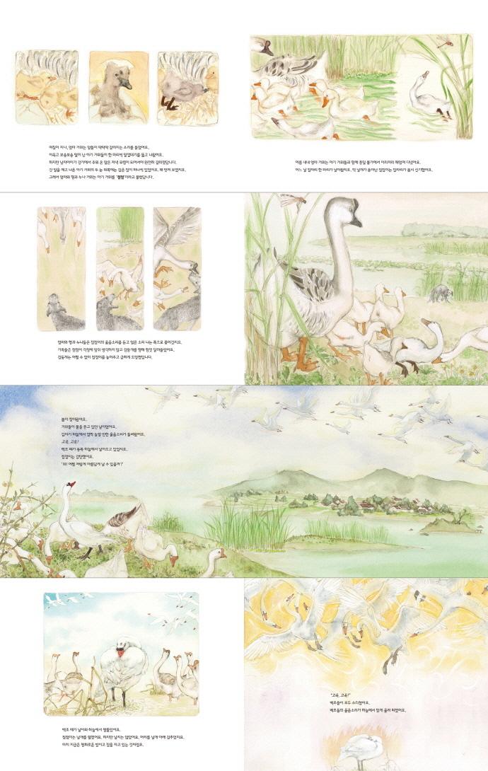 하늘에서 들려온 노래(그림책 마을 8)(양장본 HardCover) 도서 상세이미지