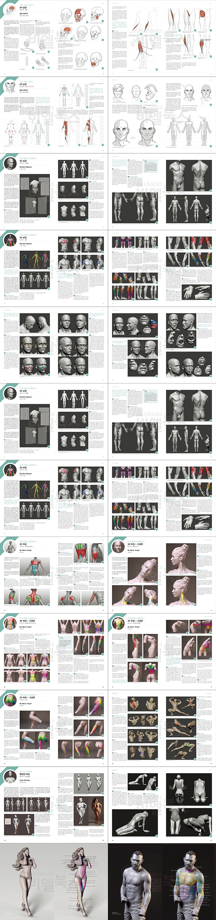 3D 캐릭터모델링의 정석(해부학구조로 알아보는) 도서 상세이미지