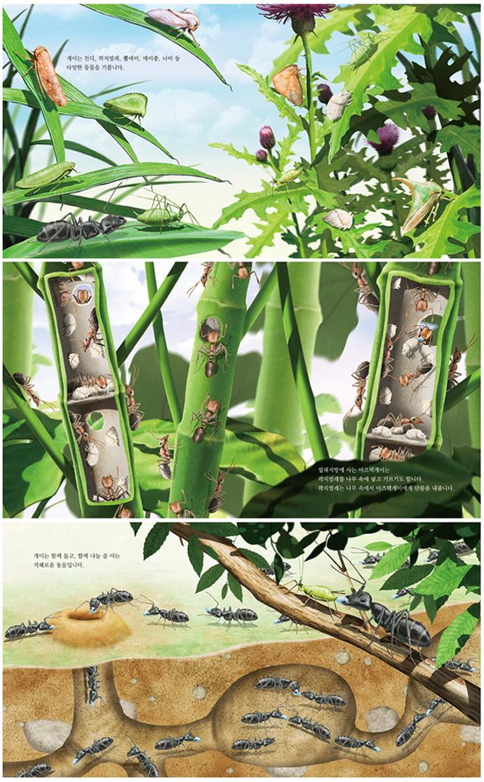 개미에게 배우는 지혜(최재천 교수의 어린이 개미 이야기 5)(양장본 HardCover) 도서 상세이미지