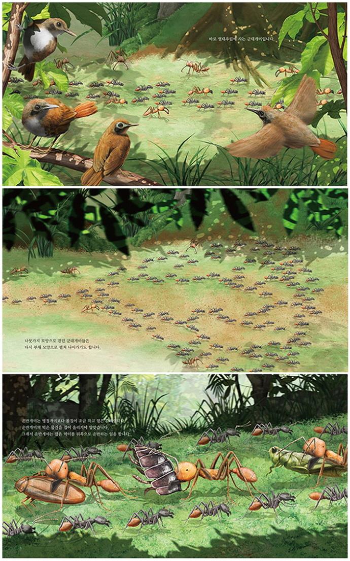 개미에게 배우는 단체생활 도서 상세이미지
