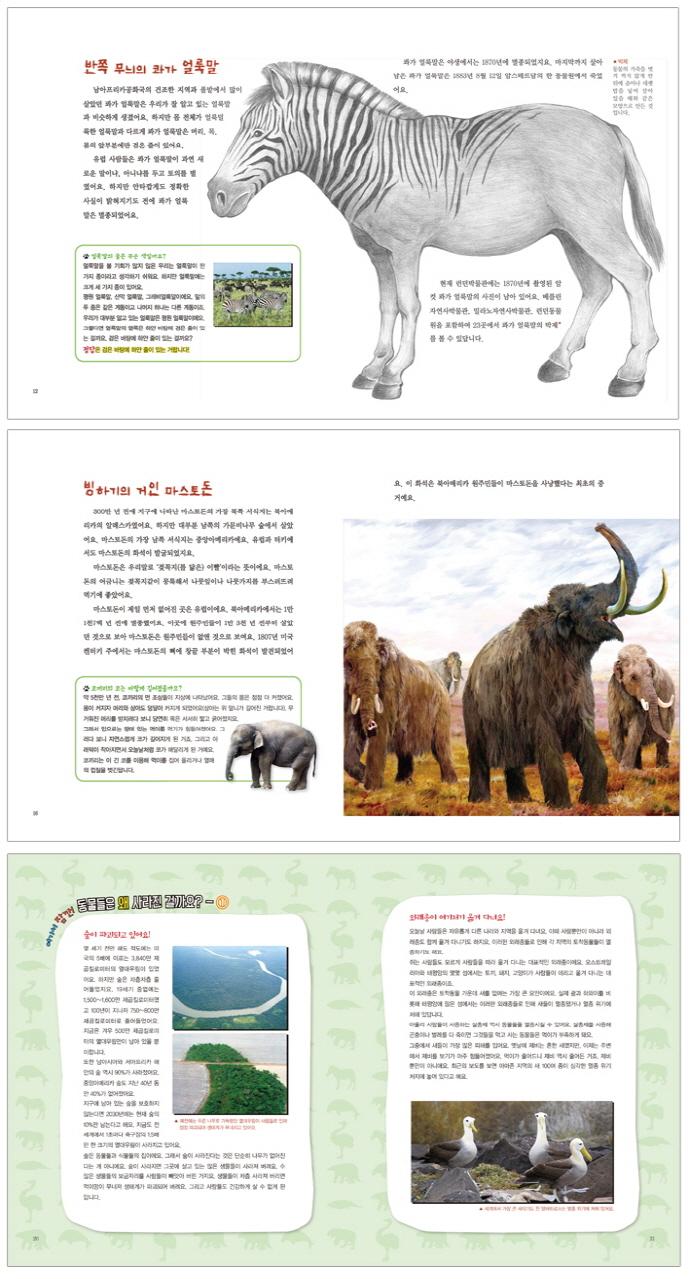 사라진 동물들의 비밀(출동 지구 구조대 8)(양장본 HardCover) 도서 상세이미지