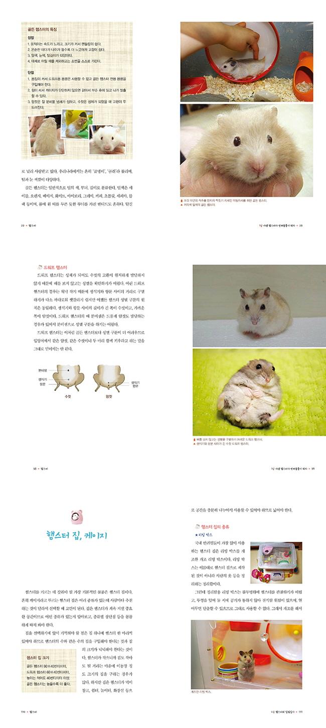 햄스터(사지말고 입양하자 시리즈 1) 도서 상세이미지