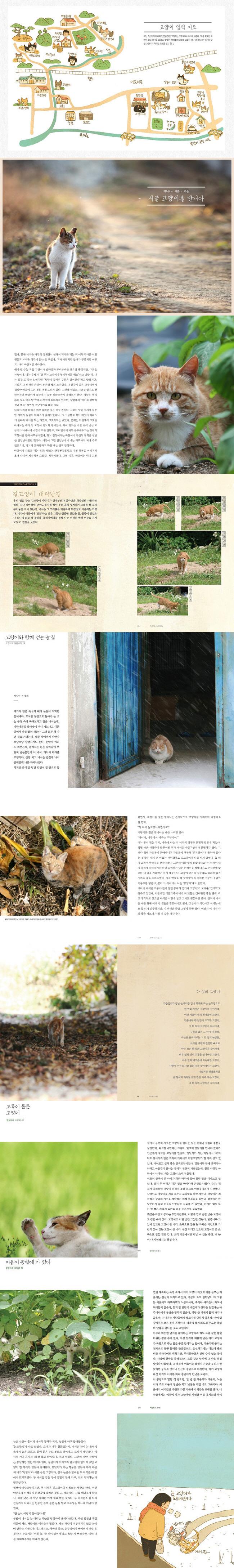 명랑하라 고양이 도서 상세이미지