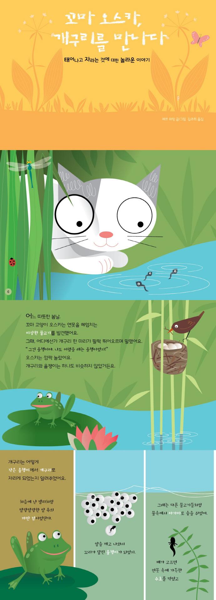 꼬마 오스카, 개구리를 만나다(꼬마 고양이 오스카 탐구시리즈)(양장본 HardCover) 도서 상세이미지