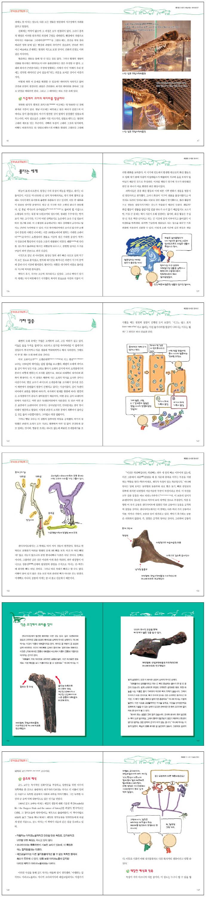 생물선생님도 몰래 보는 진화론(개정판)(사이언스 Why 시리즈) 도서 상세이미지