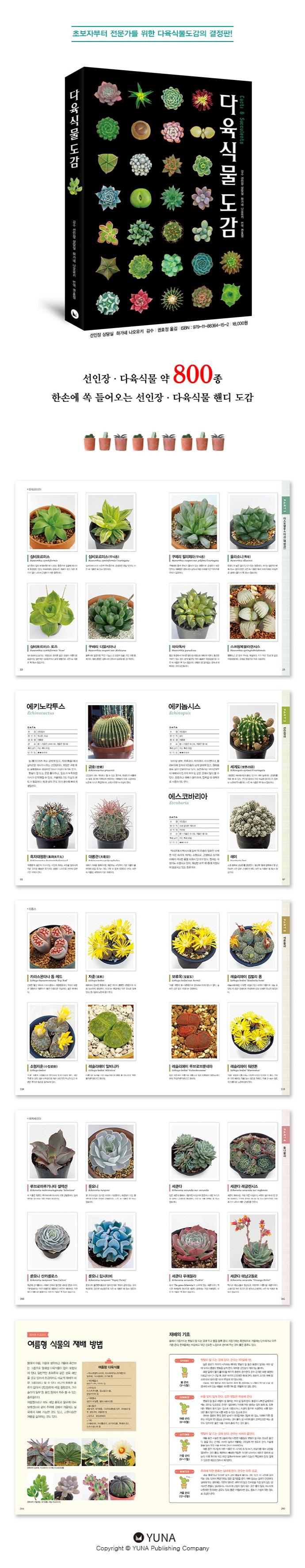 다육식물도감 Cacti & Succulents 도서 상세이미지
