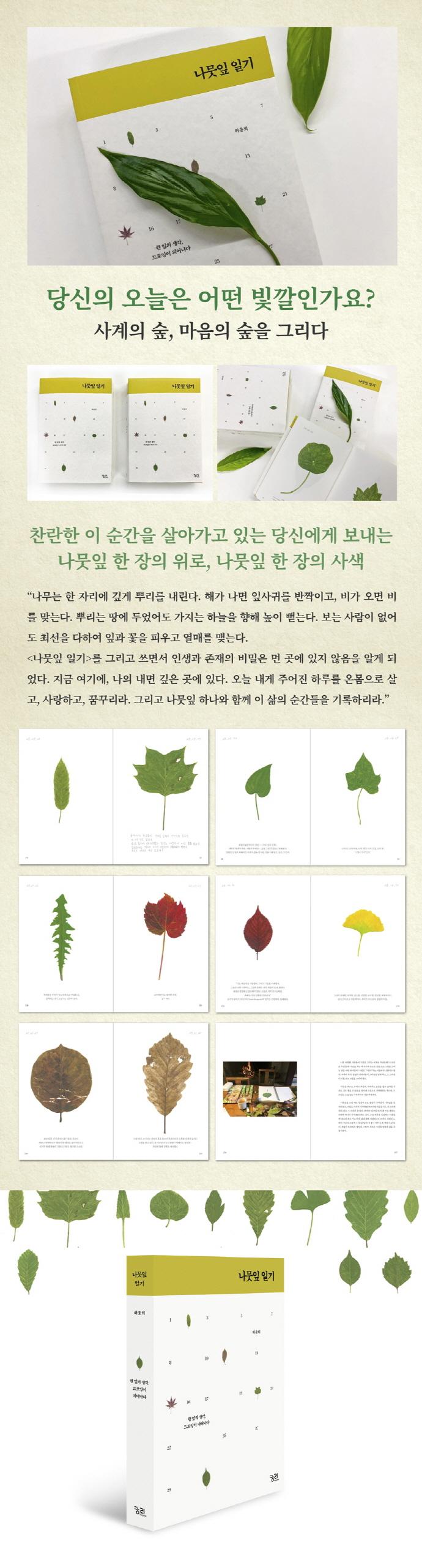 나뭇잎 일기 도서 상세이미지
