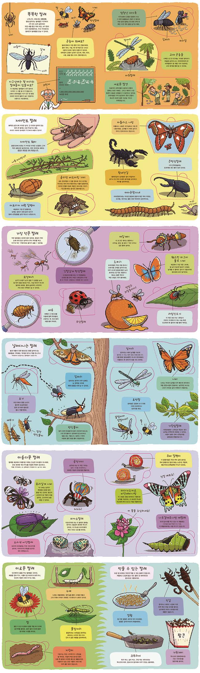 꿈틀꿈틀 곤충 여행(우리는 탐험가)(보드북) 도서 상세이미지