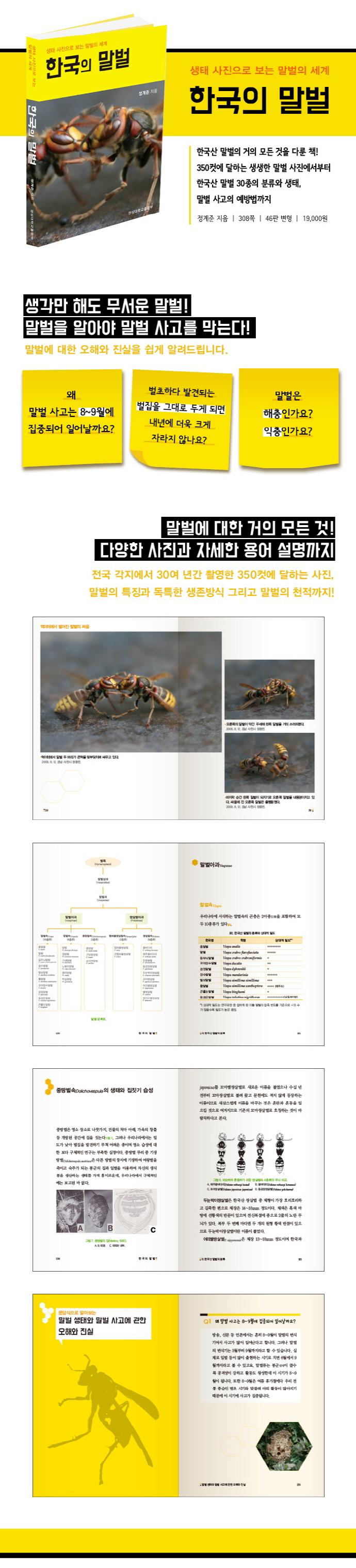 한국의 말벌 도서 상세이미지
