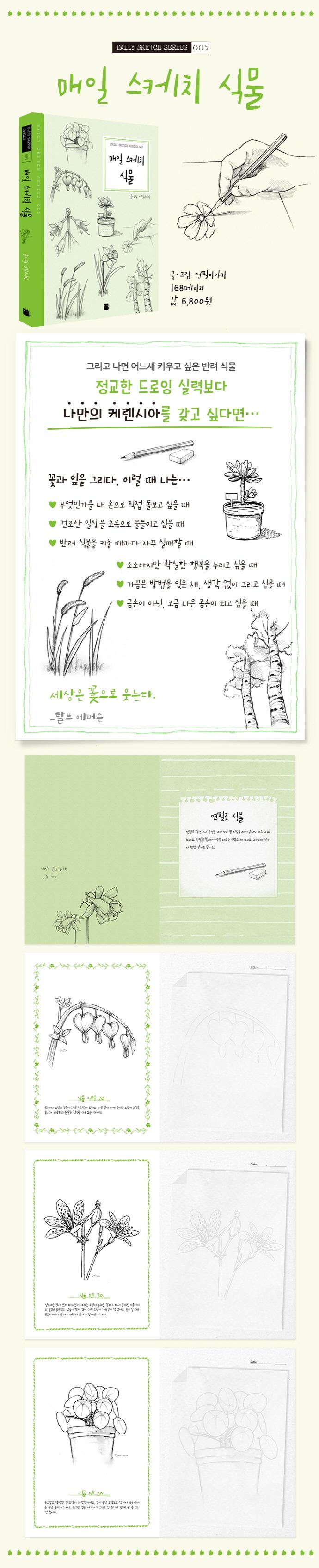 매일 스케치 식물 도서 상세이미지