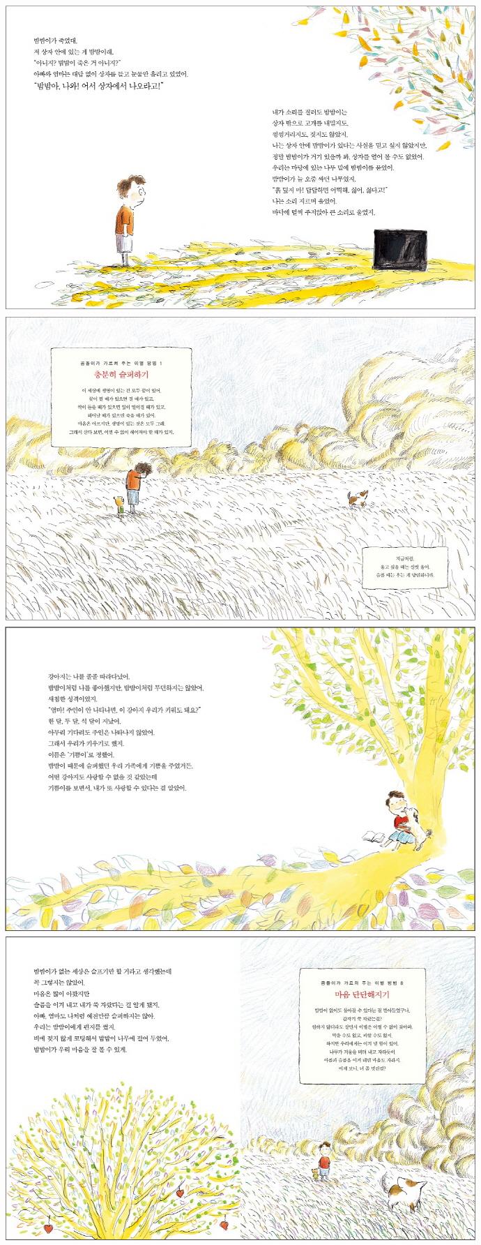 밤밤이와 안녕 할 시간(스콜라 꼬마지식인 13)(양장본 HardCover) 도서 상세이미지