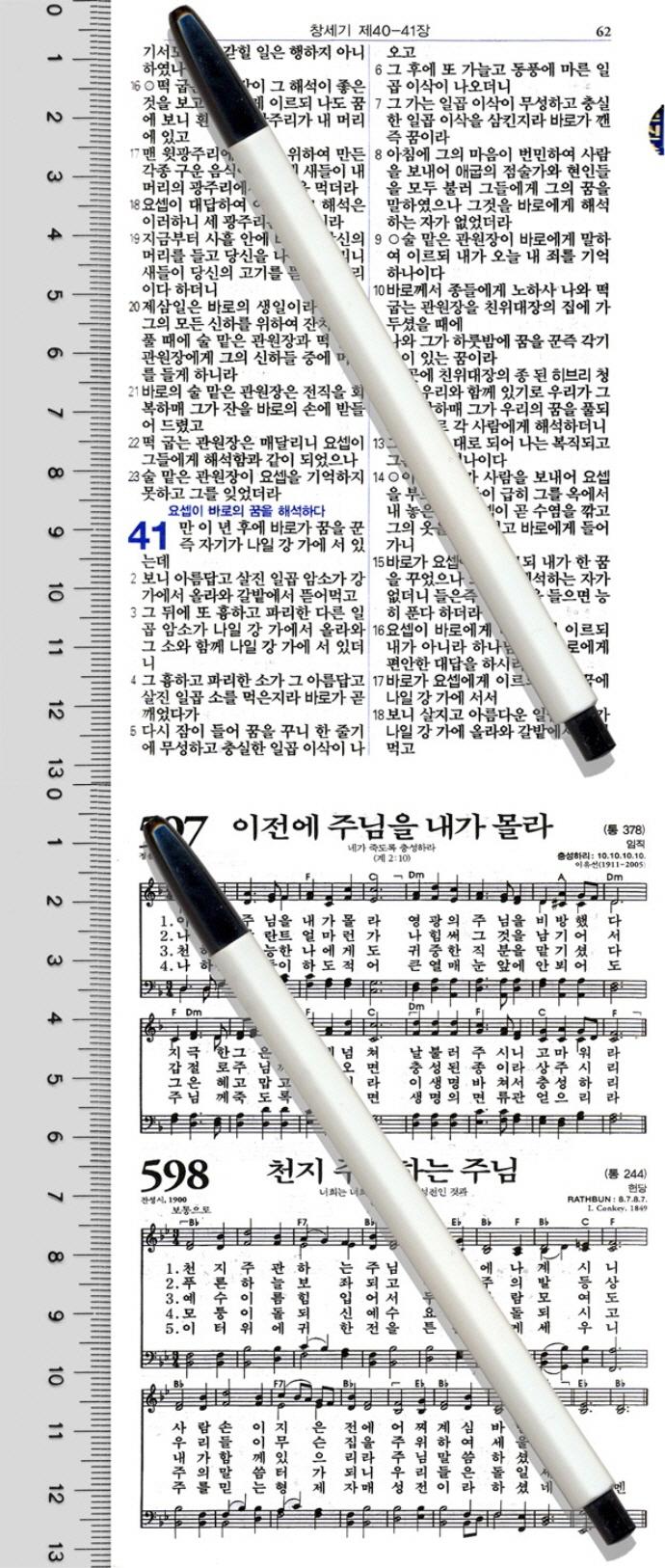 두란노성경전서(펄청색)(NKR42ETU)(합본)(지퍼)(개역개정)(새찬송가)(색인) 도서 상세이미지