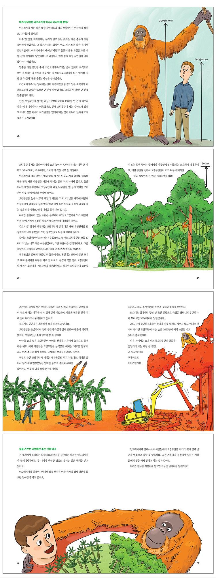 오랑우탄과 팜유 농장 보고서(풀과바람 환경생각 13) 도서 상세이미지
