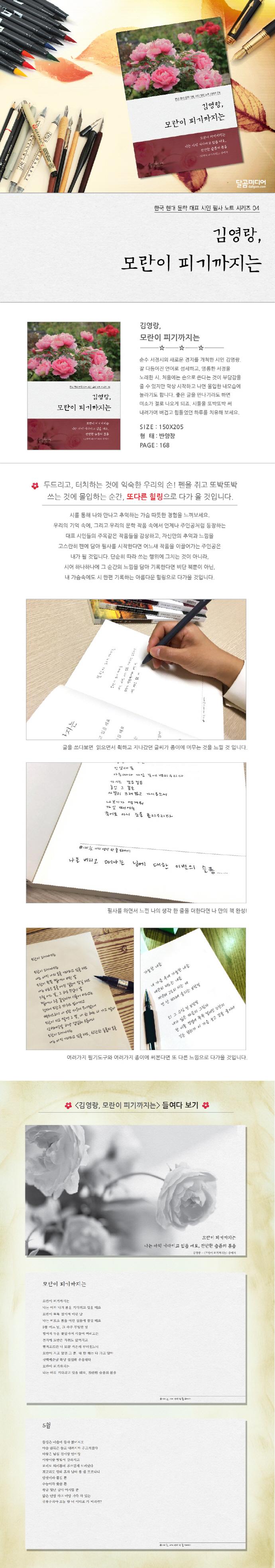 김영랑, 모란이 피기까지는(한국 현대문학 대표 시인 필사노트 시리즈 4) 도서 상세이미지