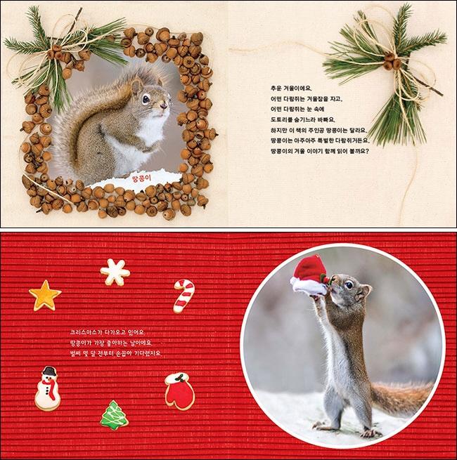 땅콩이의 행복한 크리스마스(상상수프 창의동화 46)(양장본 HardCover) 도서 상세이미지