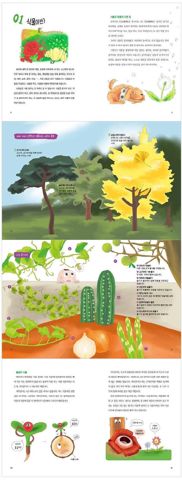 식물로 세상에서 살아남기(풀과바람 지식나무 37) 도서 상세이미지