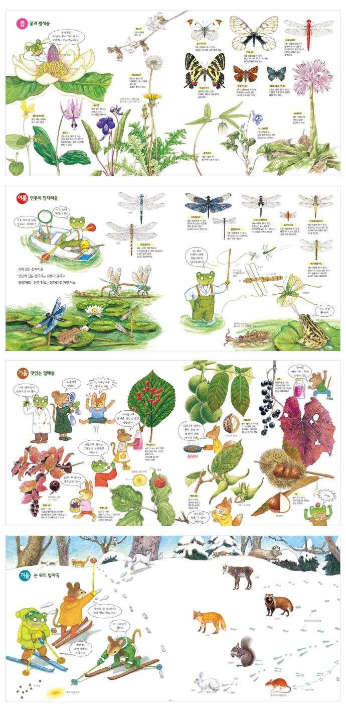 사계절 자연 학교(산으로 들로)(바람그림책 28)(양장본 HardCover) 도서 상세이미지