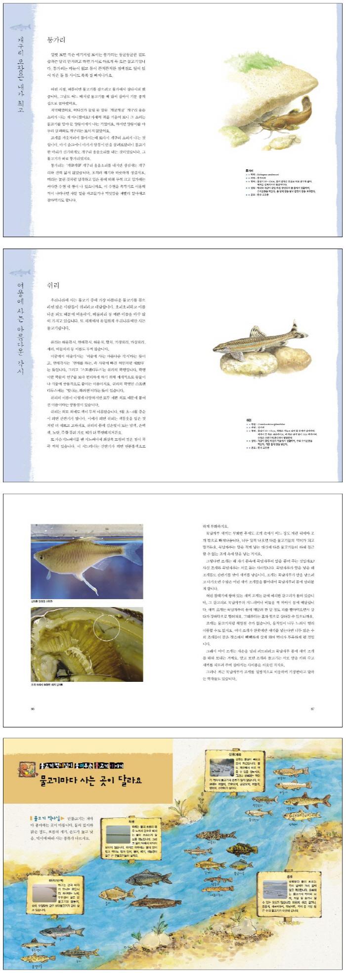 물고기 이야기(알고 보면 더 재미있는) 도서 상세이미지