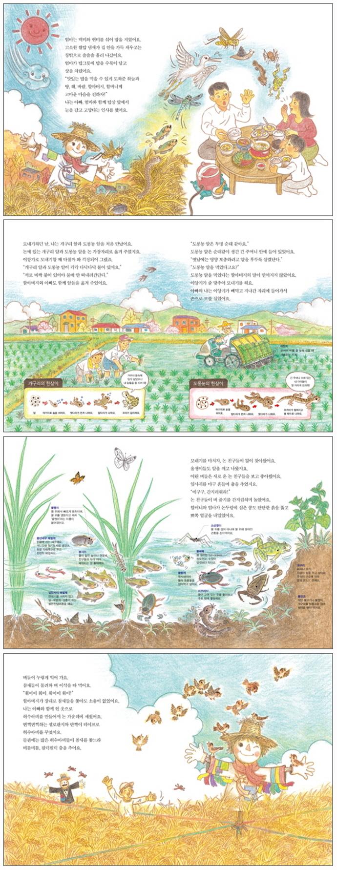 쌀밥 한 그릇에 생태계가 보여요(스콜라 꼬마지식인 14)(양장본 HardCover) 도서 상세이미지