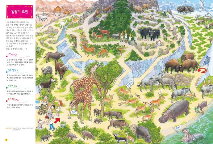 미로탐험: 신기한 동물 왕국(양장본 HardCover) 도서 상세이미지
