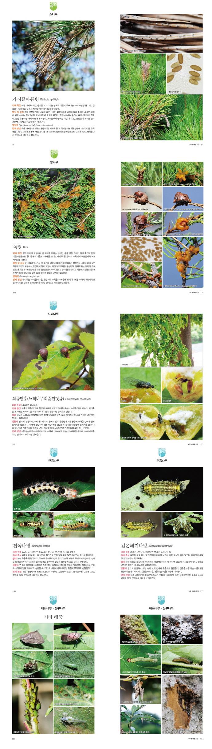 나무 병해충 도감(한국생물목록 10) 도서 상세이미지