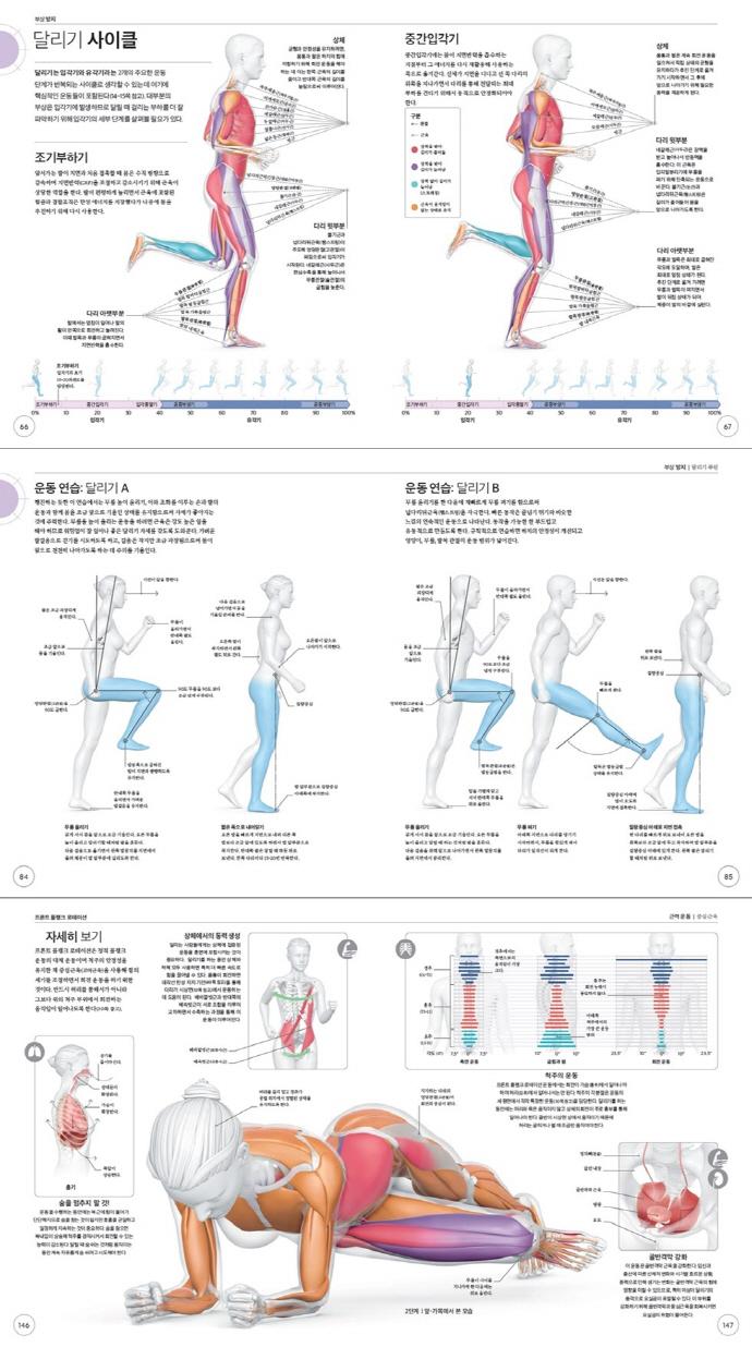 달리기의 과학(DK 운동의 과학 시리즈)(반양장) 도서 상세이미지