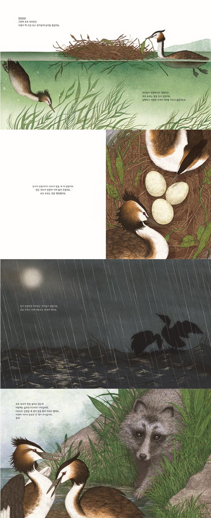 포포 부부의 떠내려간 둥지(우리그림책 29)(양장본 HardCover) 도서 상세이미지