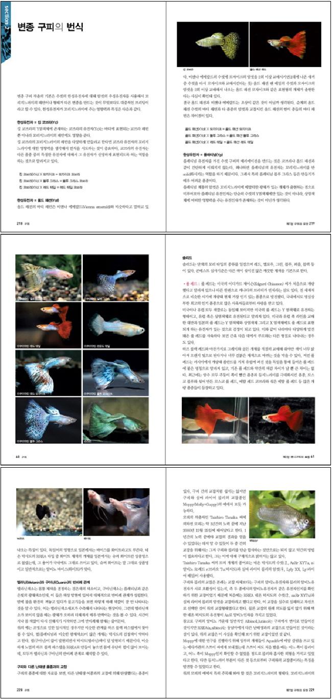 열대어의 보석 구피(마니아를 위한 Pet Care 시리즈 1) 도서 상세이미지