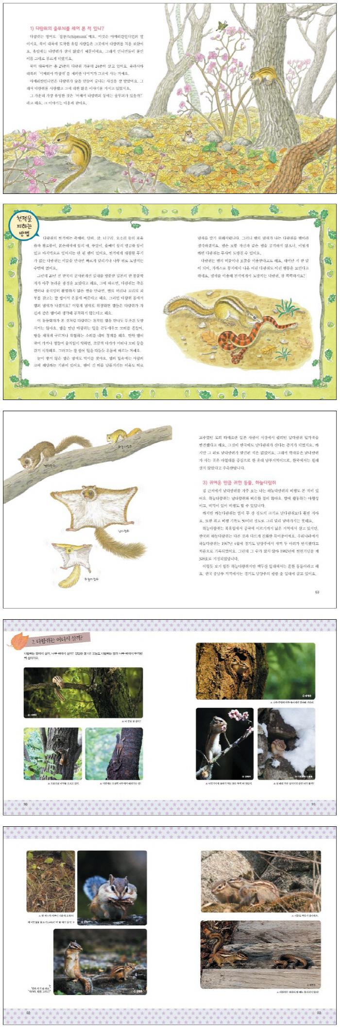 다람쥐(자연과 함께 살아가는 이야기 2) 도서 상세이미지