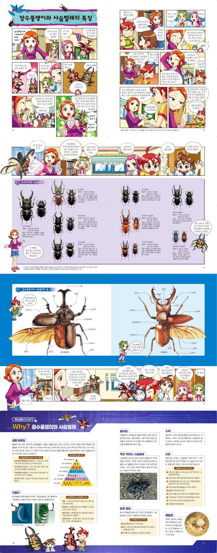 Why? 장수풍뎅이와 사슴벌레(초등과학학습만화 44)(양장본 HardCover) 도서 상세이미지