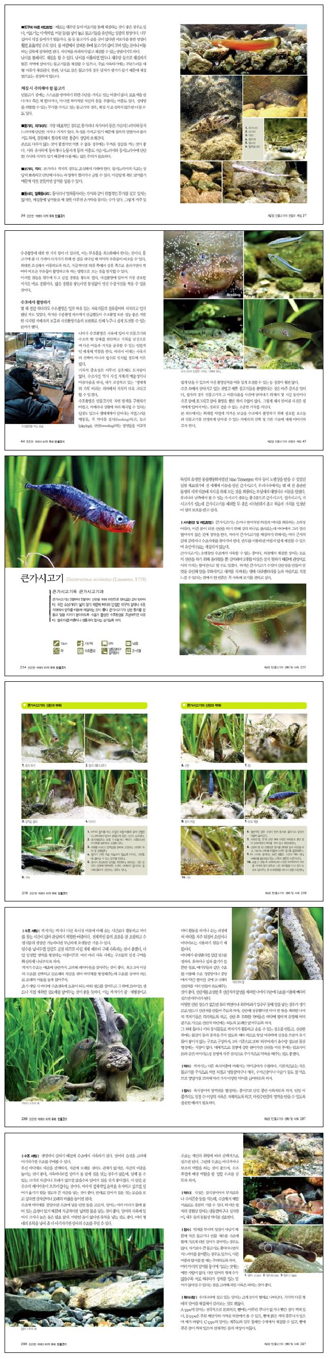 은은한 색채의 미학 우리 민물고기(마니아를 위한 PET CARE 시리즈 4) 도서 상세이미지