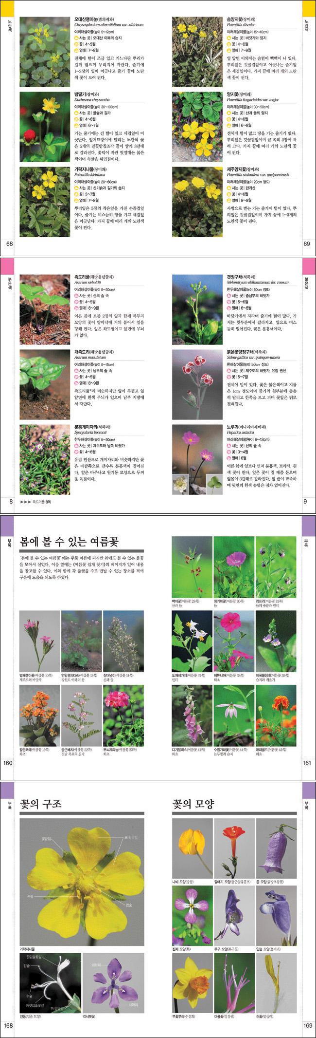 봄꽃 쉽게 찾기(OUTDOOR BOOKS 9) 도서 상세이미지