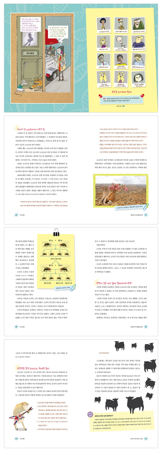 DNA 탐정(라임 틴틴 스쿨 6) 도서 상세이미지