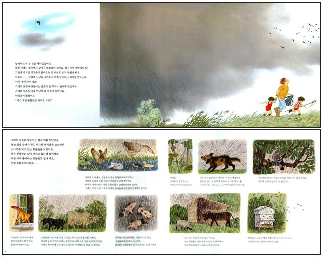 비가 오면 동물들은 어디로 가요(물구나무 그림책 54)(양장본 HardCover) 도서 상세이미지