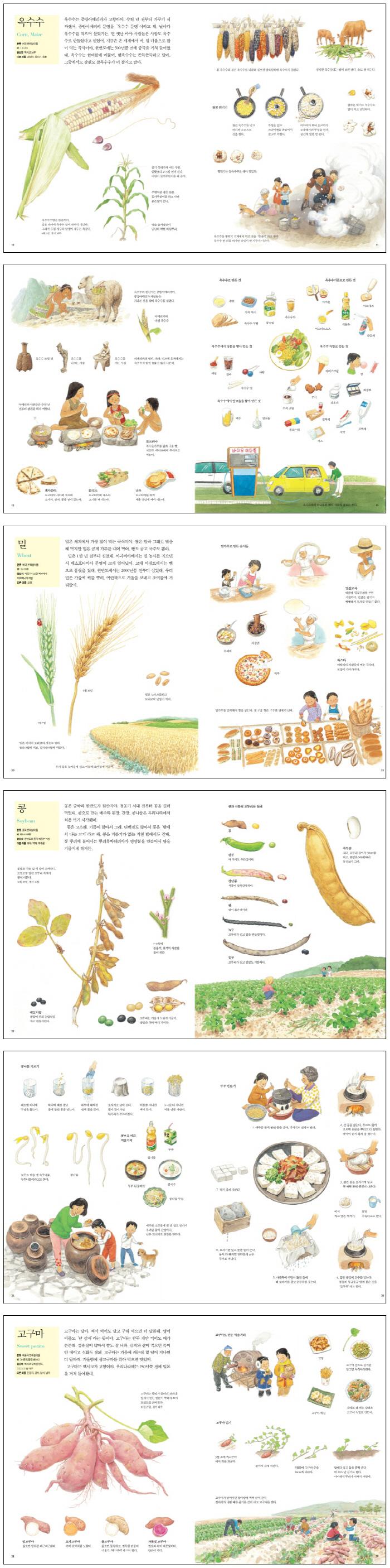 내가 좋아하는 곡식(양장본 HardCover) 도서 상세이미지