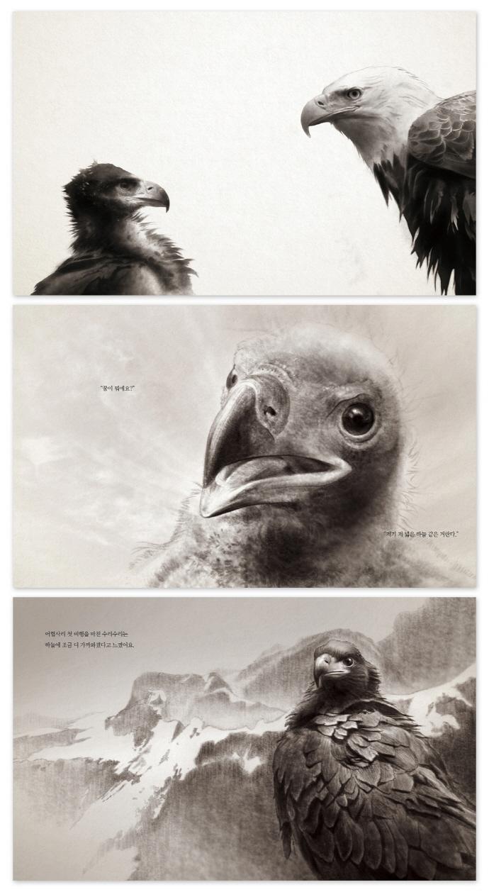 독수리 수리수리의 비밀(사물의 비밀) 도서 상세이미지