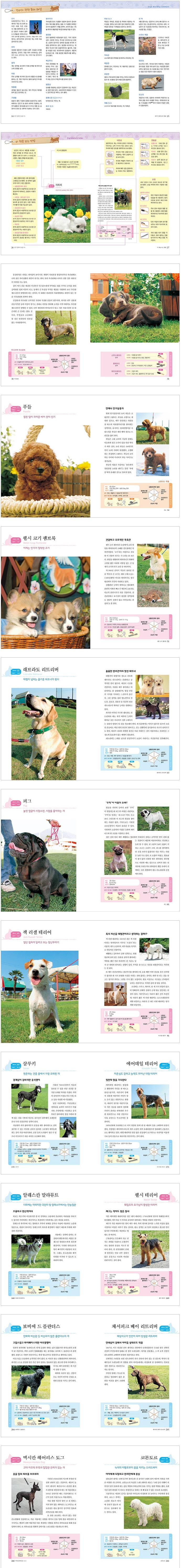인기 강아지 도감 174 도서 상세이미지