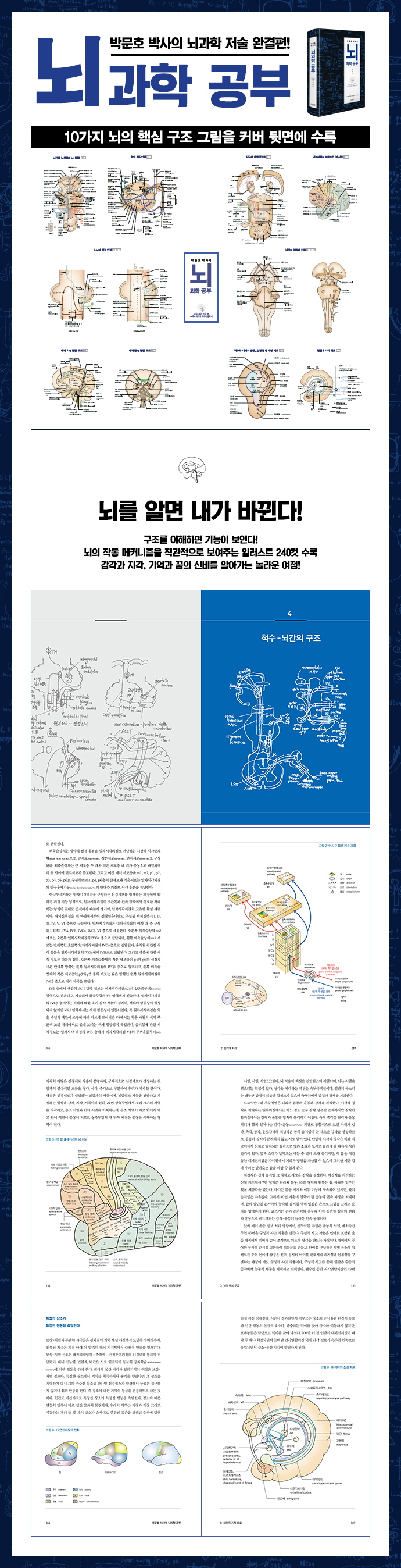 박문호 박사의 뇌과학 공부(양장본 HardCover) 도서 상세이미지