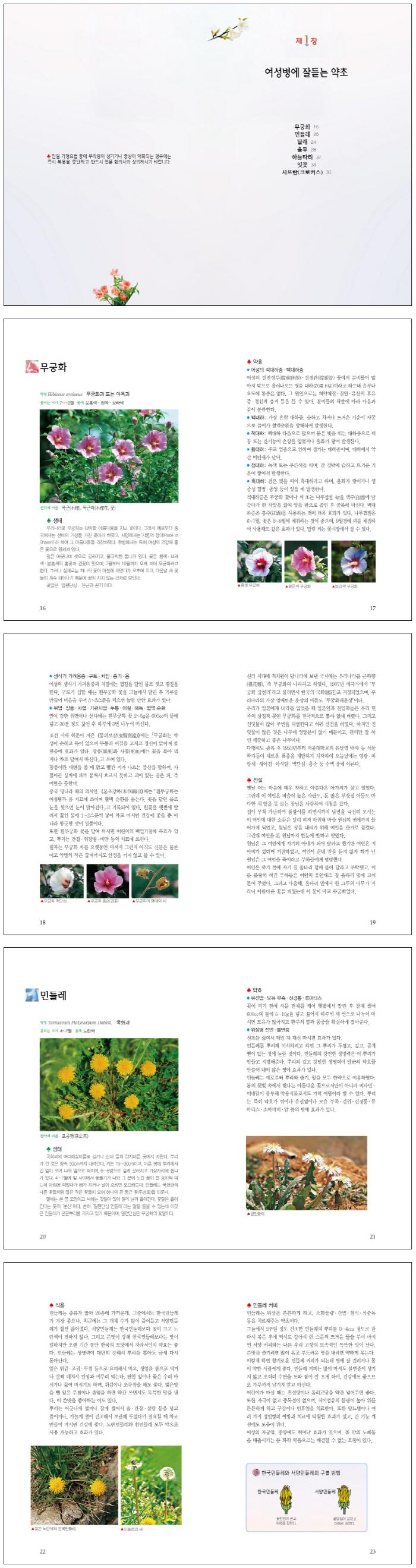 한국의 약초 도서 상세이미지