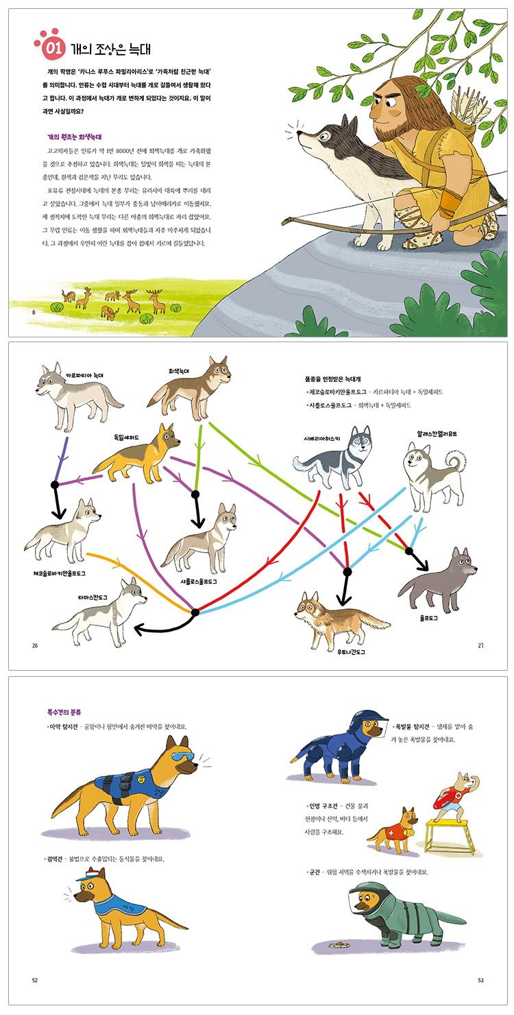 나는 개가 아닙니다(풀과바람 지식나무 44) 도서 상세이미지