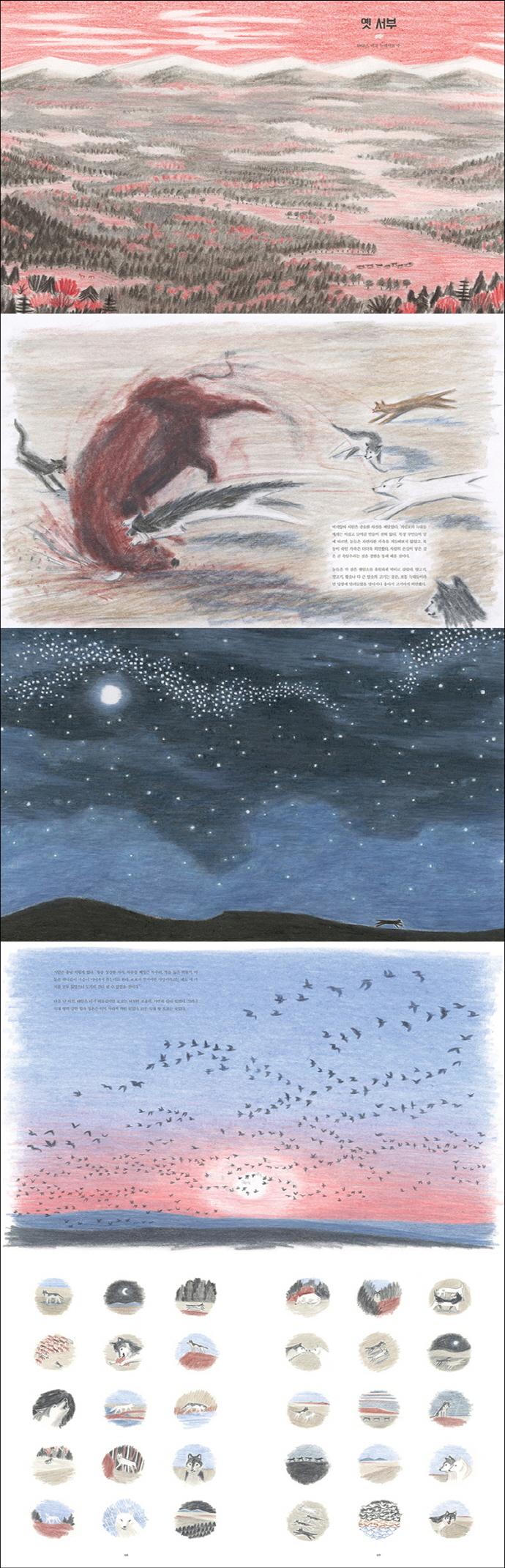 커럼포의 왕 로보(양장본 HardCover) 도서 상세이미지