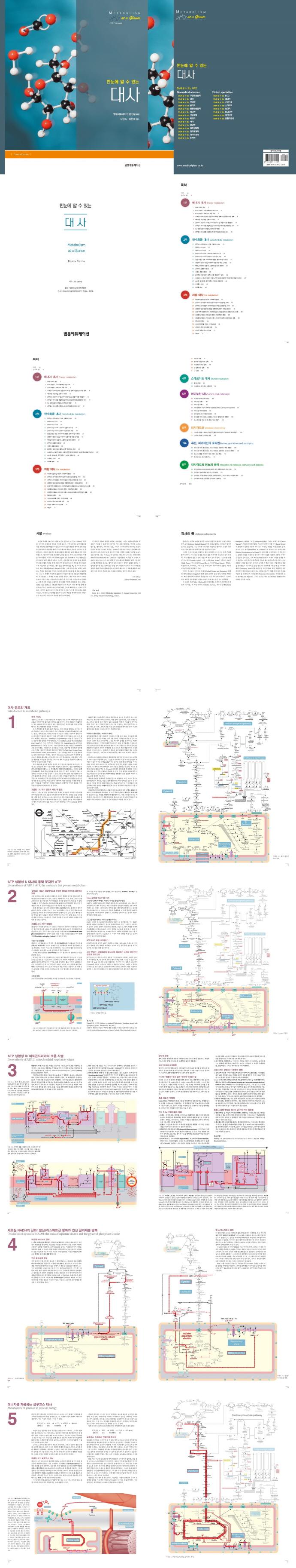 한눈에 알 수 있는 대사(4판) 도서 상세이미지