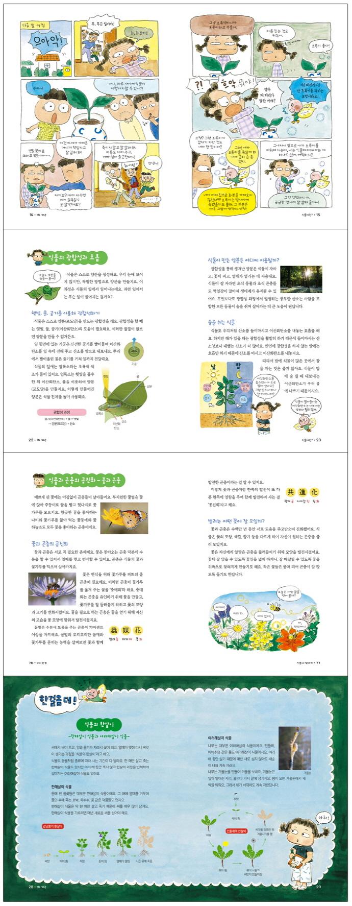 세상에서 가장 착한 초록 : 반려식물(참 잘했어요 과학 16) 도서 상세이미지