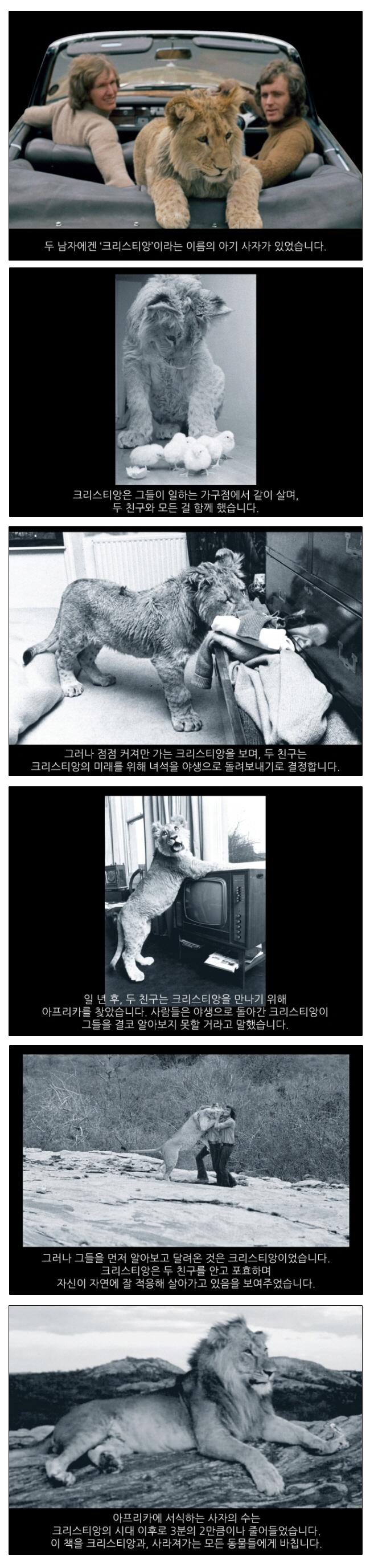 크리스티앙(양장본 HardCover) 도서 상세이미지