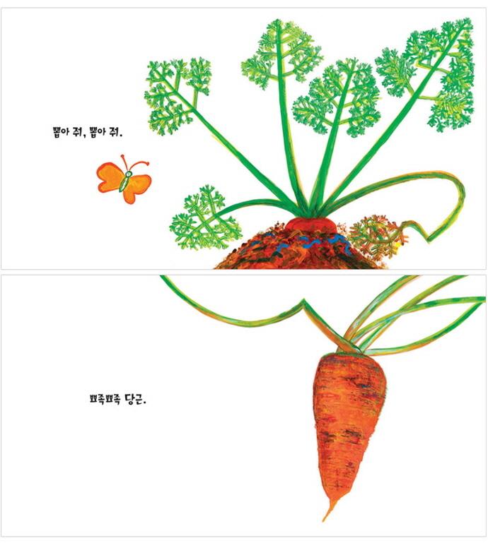 채소가 좋아(둥둥아기그림책 16)(보드북) 도서 상세이미지