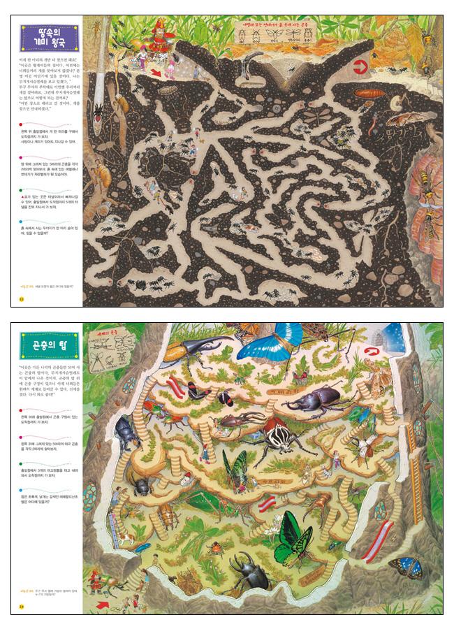 미로탐험: 거대한 곤충나라(양장본 HardCover) 도서 상세이미지