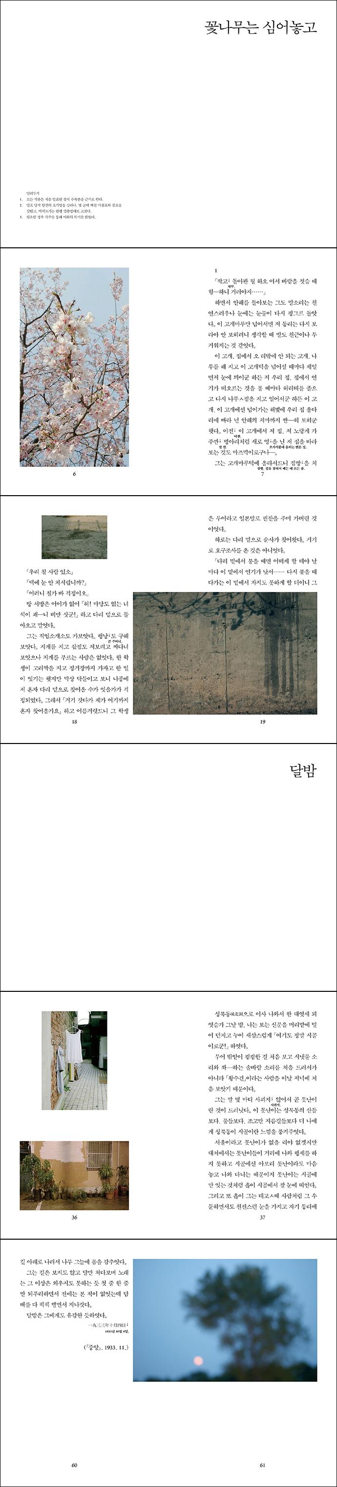 꽃나무는 심어놓고 외(종이섬 사진소설 3) 도서 상세이미지