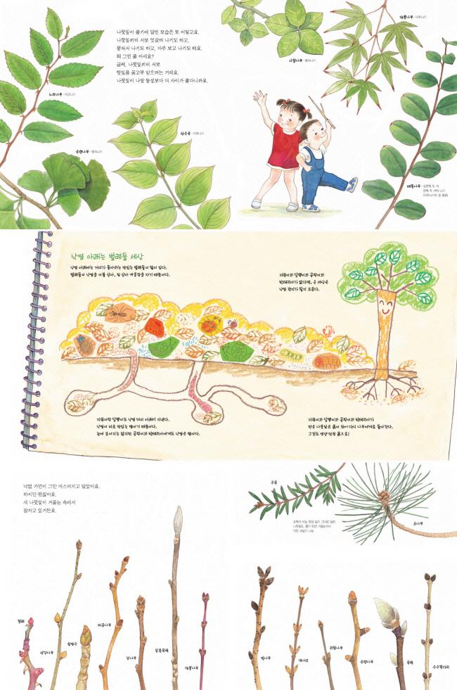 내가 만난 나뭇잎 하나(지식 그림책 20)(양장본 HardCover) 도서 상세이미지